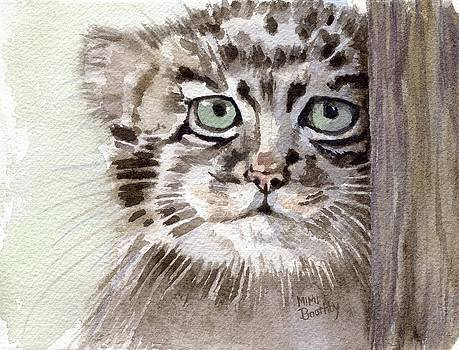Pallas Cat by Mimi Boothby