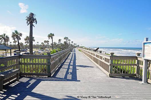 Palm Coast Florida by Larry Van Valkenburgh