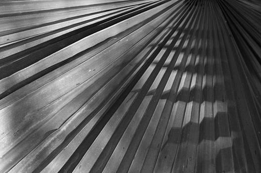Palm Mystery by Sandy Fisher