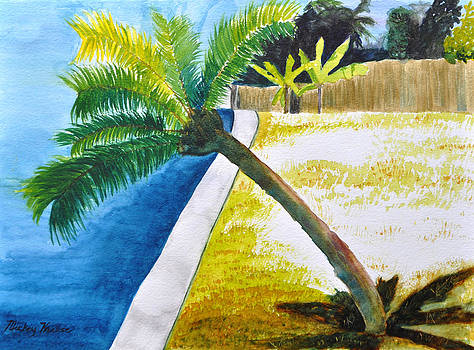 Palm over Seawall by Mickey Krause