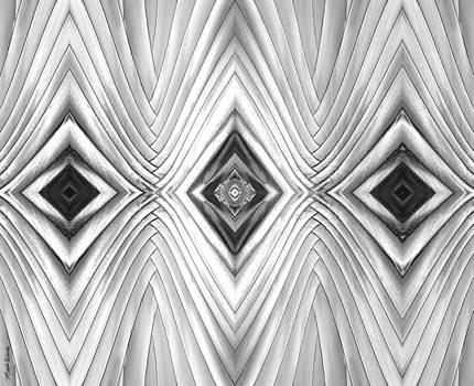 Michelle Wiarda - Palm Patterns