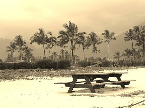 Palm Picnic by Sharon Farris