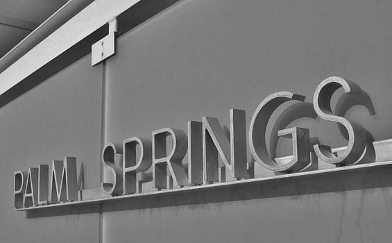 Palm Springs 2 by Shawn Savage