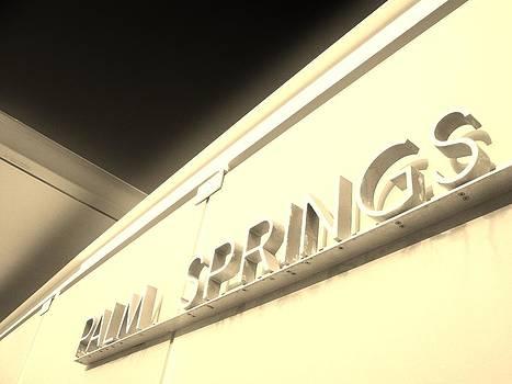 Palm Springs by Shawn Savage