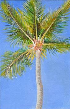 Palmier de Redlands by Muriel Dolemieux