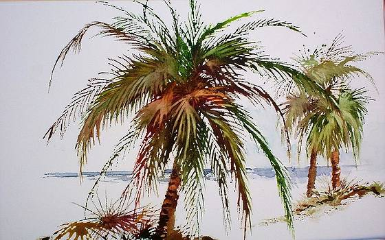 Palms on beach by Richard Willows