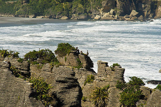 Pancake Rock Formations by Graeme Knox