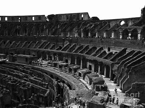 Panorama 3-1 by William Randall