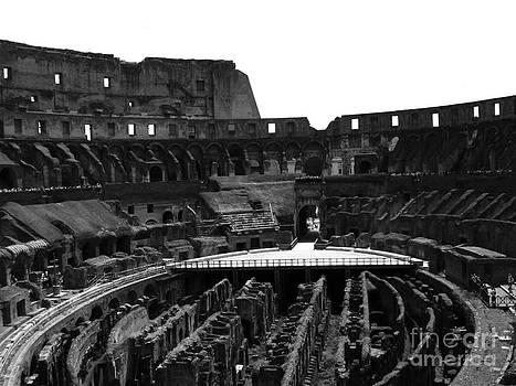 Panorama 3-2 by William Randall
