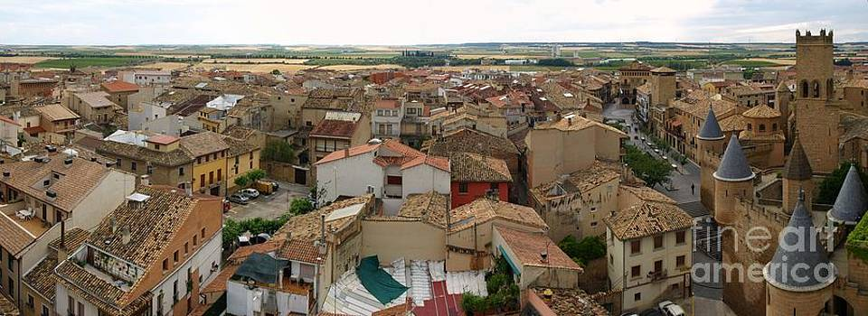 Panoramic View of Olite by Alfredo Rodriguez
