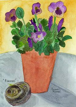 Pansies by Susan Risse
