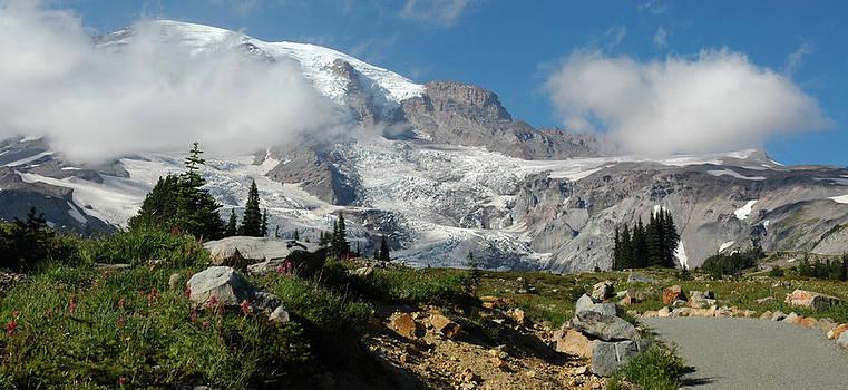 Paradise at Mt Rainier by Wanda Jesfield
