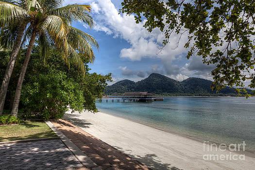 Adrian Evans - Paradise Island
