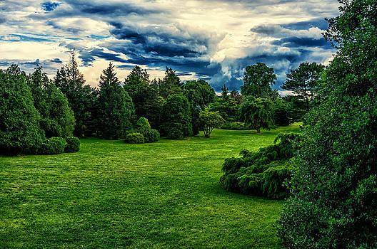 Paradise on Earth by Alhaji Samura