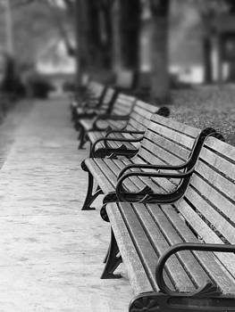Paris Park Benches by Jeremy Allen
