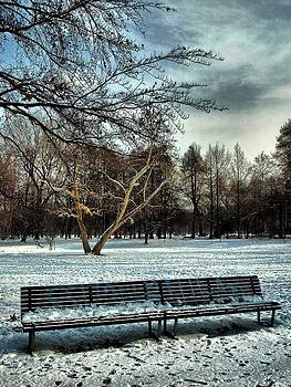 Park bench in the snow 1 by Ettore Zani