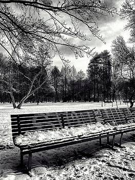 Park bench in the snow 2 - black and white by Ettore Zani