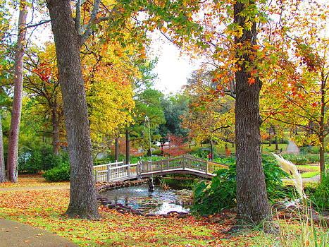 Park in Tyler by Evgeniya Sohn Bearden