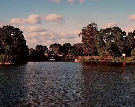 Park Lagoon by Victoria Sheldon