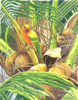 Parrot in Palm by Norma Gafford