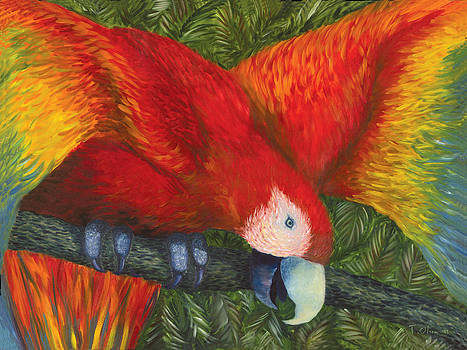 Parrot by Tammy Olson