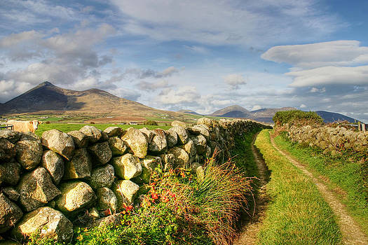 Pathway to the Mourne Mountains by David McFarland