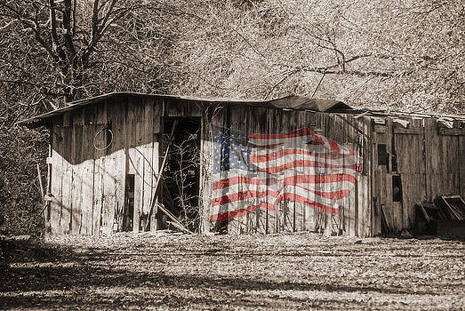 Patriotic Barn by Lisa Moore