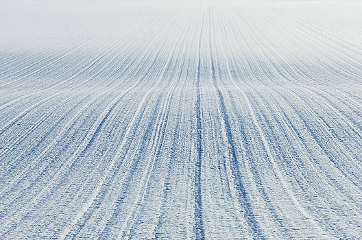 Pattern Of Ploughed Field After A Fresh by Iain  Sarjeant