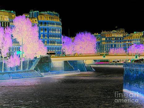 Paysage - Paris - France by Francoise Leandre