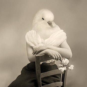 Peace Seeker by Mostafa Moftah