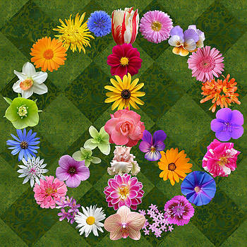 Peace Sign Flowers by Susan Ragsdale
