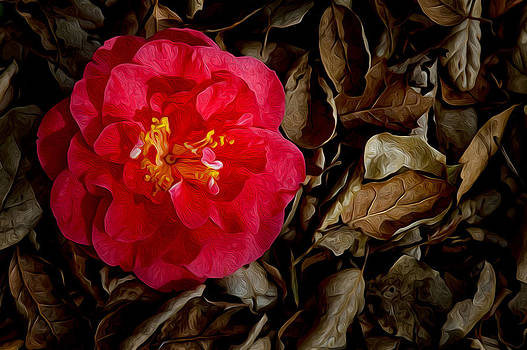 Peaceful Camellia by Bobbi Feasel
