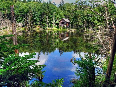 Peaceful Pond by Doug McPherson