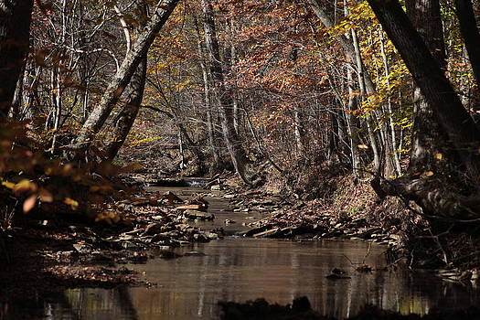 Peaceful Stream by George Miller