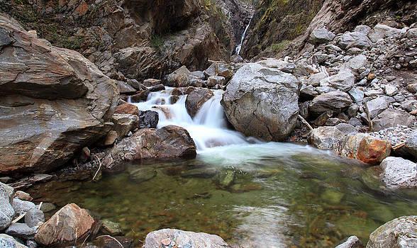 Peaceful Stream by Wyatt Rivard