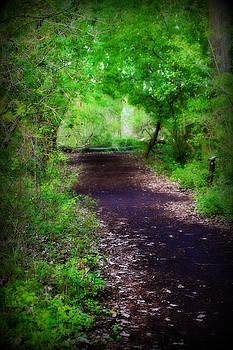 Rebecca Frank - Peaceful Walk