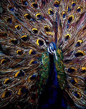 Amanda Dinan - peacock 1