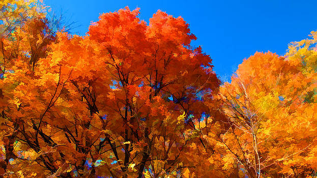 Chantal PhotoPix - Peak Fall Autumn Colors - Colorful Forest Foliage Landscape under Blue Skies - Thanksgiving Season