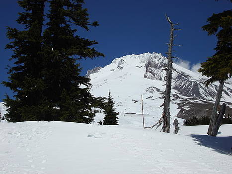 Glenna McRae - Peak of Mt Hood Oregon