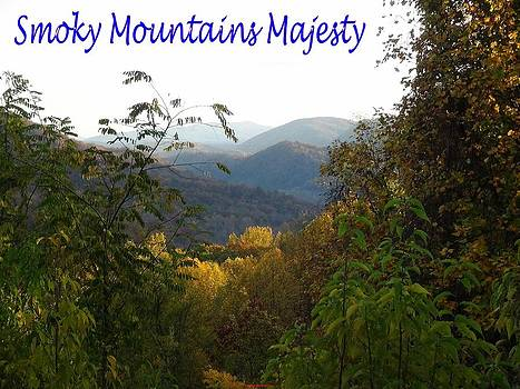 Peaking out at the mountains by Jay Blaustein