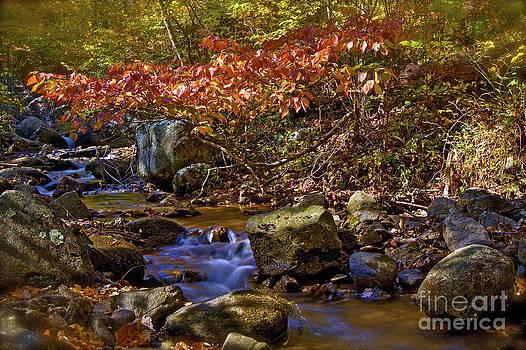 Peaks Creek by Mark East
