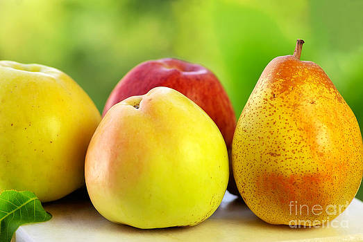 Pear and apples. by Inacio Pires