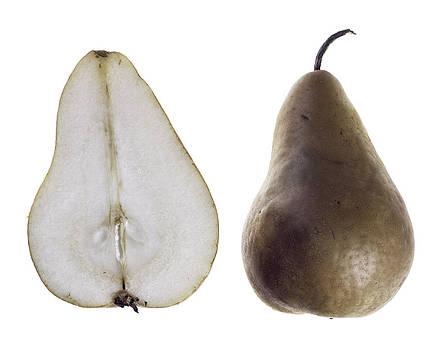 Pear by Nathaniel Kolby