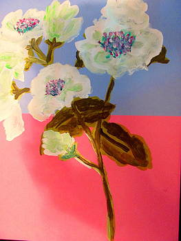 Pear Tree Blossoms by Amy Bradley