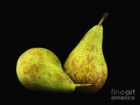 Pears on Black by Alfredo Rodriguez