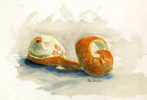 Peeled orange by Paul Gardner
