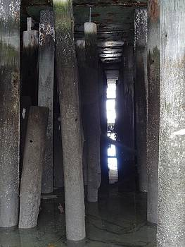Nancy Fillip - Peering through the Piles