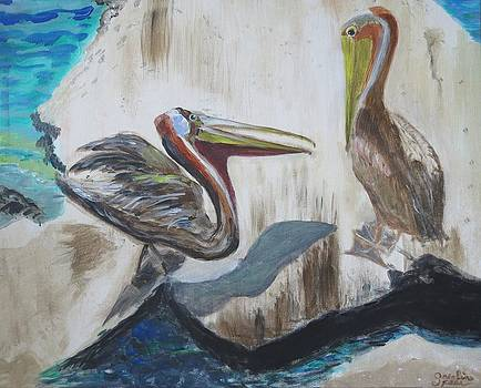 Pelican Bully by Carolyn Speer