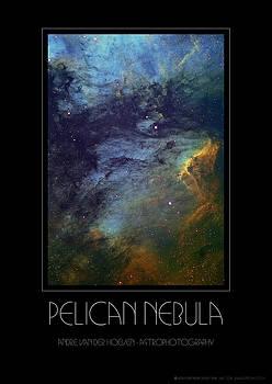 Pelican Nebula by Andre Van der Hoeven