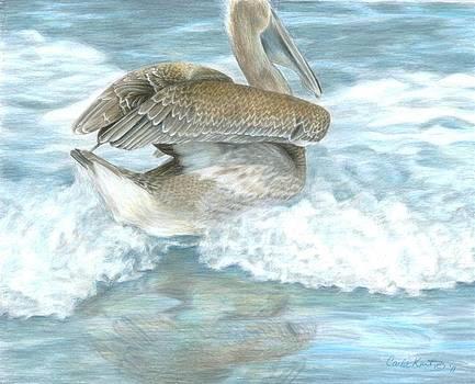 Pelican Surf by Carla Kurt